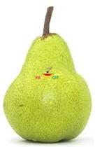 Pear Medium